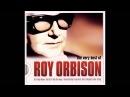 Roy Orbison You Got It