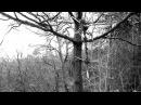 Aeurtum Shade Of A Behemoth OFFICIAL VIDEO HD
