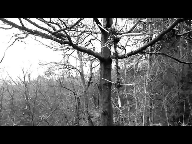 Aeurtum - Shade Of A Behemoth OFFICIAL VIDEO HD