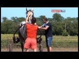 II Фестиваль конного спорта