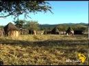 Жизнь в племени Химба. часть 2