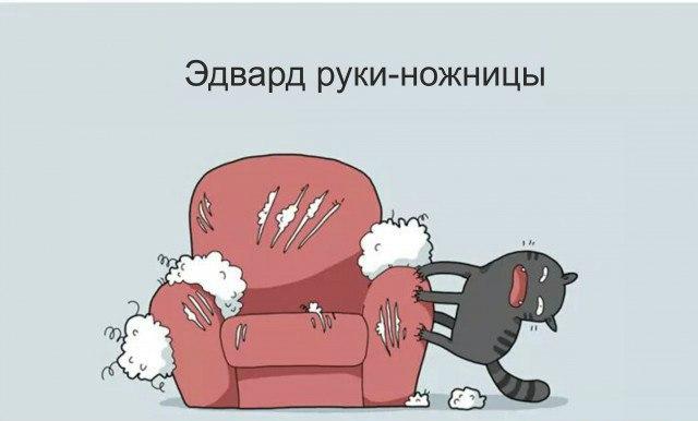 http://cs625526.vk.me/v625526339/4e9dc/_xFv1PX89Ew.jpg