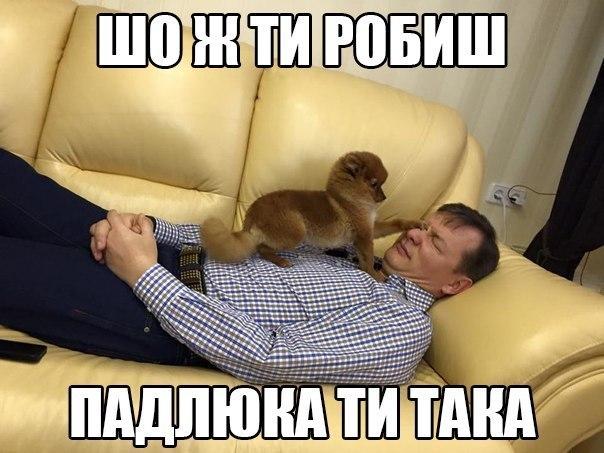 ГПУ намерена объявить о подозрении одному из членов Кабмина, - Жебривский - Цензор.НЕТ 4330