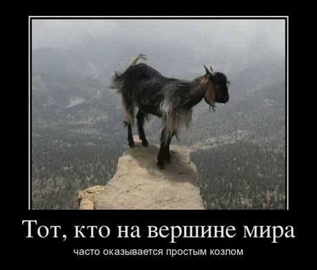 http://cs625526.vk.me/v625526903/3e366/-UgLil_6U80.jpg