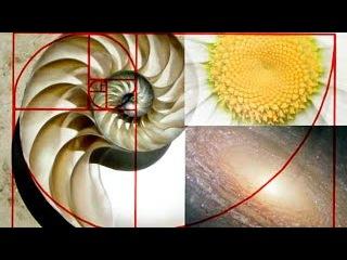 Золотое сечение.Тайная власть пропорций.Секретные материалы