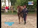 Участники конного похода «Москва-Берлин» побывали в Выгоничском районе