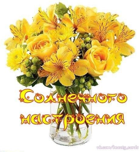 http://pp.vk.me/c625527/v625527746/2ffa6/z0DyLeX8yyc.jpg