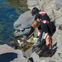 День очистки водоемов. 3 июня 2017. 10:00