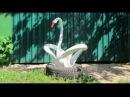 Как Сделать Лебедя из Шины Своими Руками / Поделки из покрышек Sekretmastera