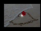 Et l'amour s'en va - Joe Dassin.wmv
