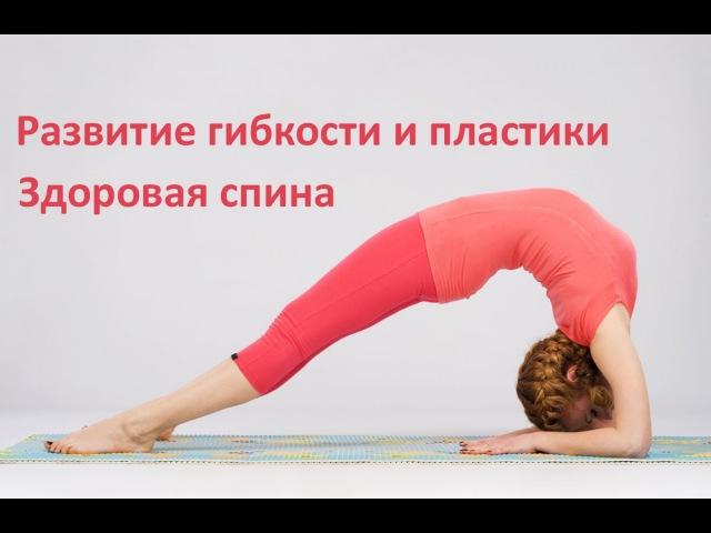 Развитие гибкости и пластики Упражнения для спины