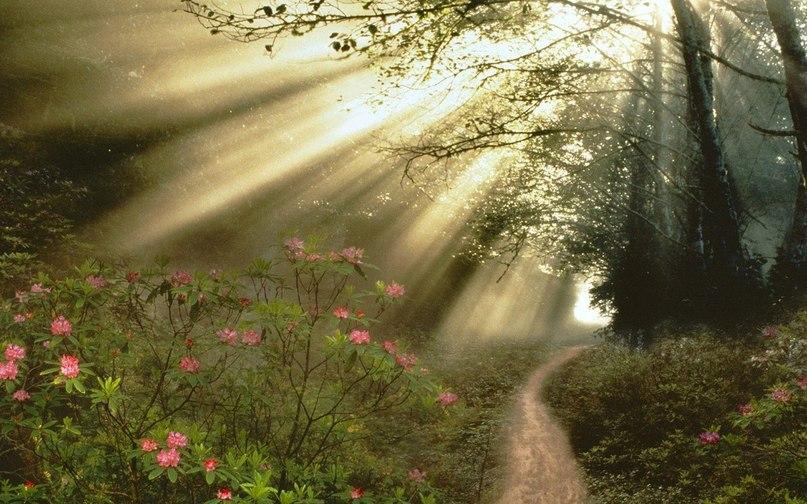 очутиться в раю - Страница 2 RqySZI6FHs4