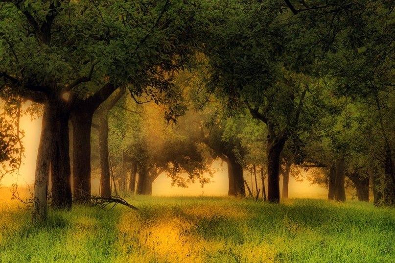 очутиться в раю - Страница 2 RcCQGnt1-m8