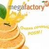 Megafactory  (ростовые фигуры)