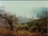 Andrei Tarkovsky - Gorgeous Polaroid Photos