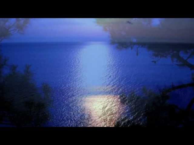 Л Бетховен Лунная соната Ludwig Van Beethoven Moonlight Sonata