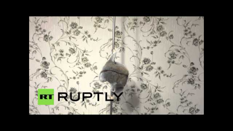 Russia This poledancing slow loris may be the cutest thing youll see all day!
