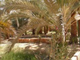 SIWA OASIS- SAHARA DESERT- EGYPT(Berber/Beduin culture!)