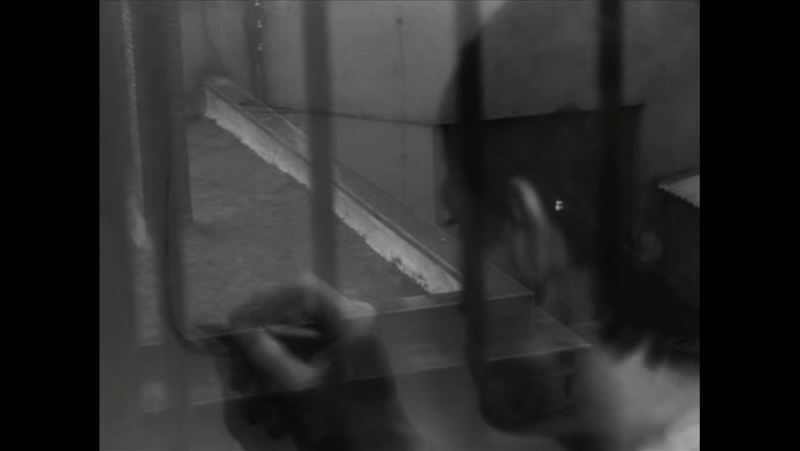 Un condenado a muerte se ha escapado-Robert Bresson.