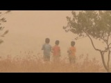 Песчаная буря. Ближний Восток: тысячи пострадавших, есть погибшие.