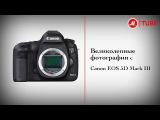 Фотоаппарат Canon EOS 5D Mark III 24-105 f/4L IS USM Kit (5260B032) \2014/ YouTube. в кч.720p.HD!