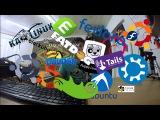 Создание флешки с kali  ubuntu  kubuntu  xubuntu