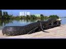 Шок видео! Самая большая змея в Мире Найдена в 2012 году ей 103 года!