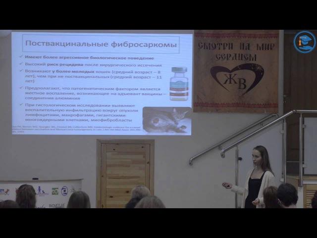 Саркома мягких тканей Биологическое поведение Диагностика и тактика лечения К В Лисицкая