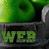 webtechnology.pro