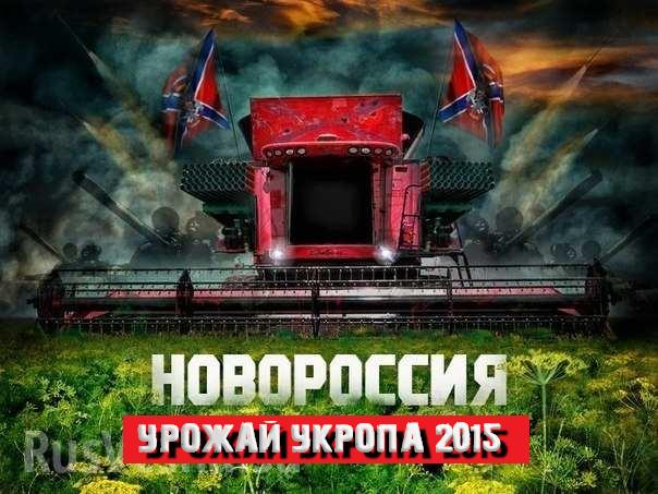 Новороссия - 1 - Страница 35 0z1FLalmxsE