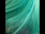 волосы после окрашивания биоламинированием Антоцианин