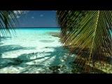 Zack Roth - Wils Lives (Dezza Remix)
