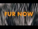 Fur Now — инициатива Международной федерации пушно-меховой торговли
