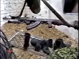 Забытый полк - Бешеная рота Гюрзы Чечня, Чеченская война