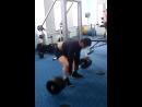136 кг,срущая собака)