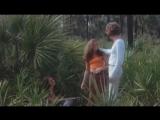 АвтостопPick-Up.1975г. Джилл Сентер, Алан Лонг, Джини Иствуд, Том Куинн