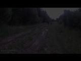 Удомля, дорога в Лишутино 7