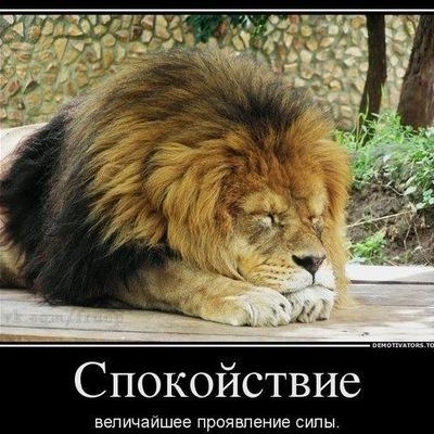 Евгений Андросов