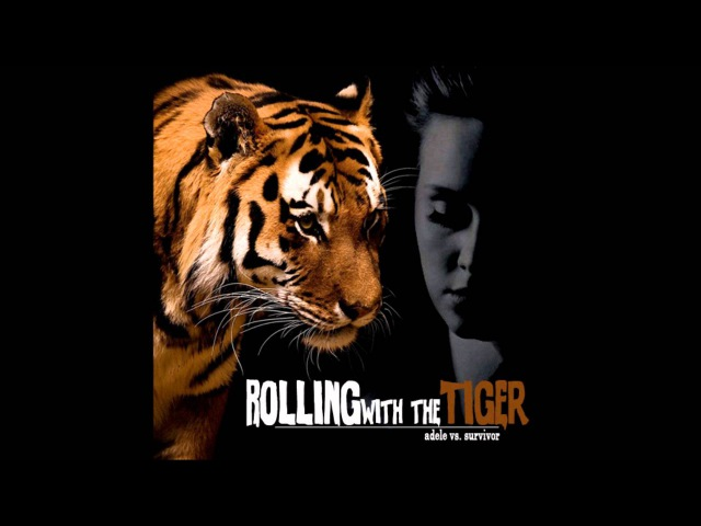 Rolling with the Tiger (Survivor vs. Adele)