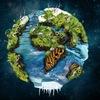 Вокруг планеты