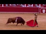 Feria de Albacete 10.09.15. Sebastián Castella- Miguel Ángel Perera- Alberto López Simón