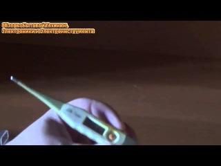 Обзор и Тестирование Электронного Термометра Модели LD-302 [© Обзоры Бытовой Техники и Электроники]