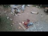 18+ ДНР  Горловка  Убитая мать с ребенком в результате бомбежки   27 07 2014