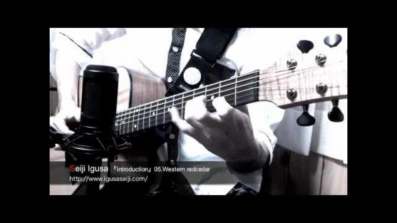Seiji Igusa -Western redcedar-