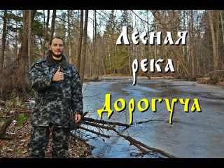 Лесная река Дорогуча (Full HD)