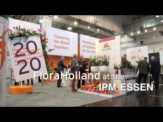 FloraHolland at the IPM Essen, 27 - 30 January 2015