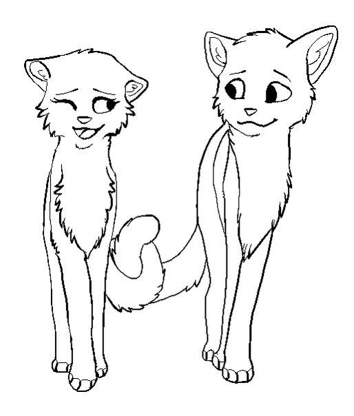 Картинки раскраска коты воители