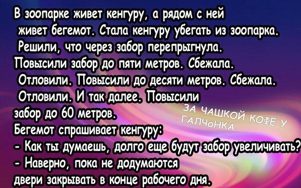 https://pp.vk.me/c625622/v625622864/f1f1/XfbdusVm0fQ.jpg