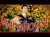 ВОТ ЭТО ПАРЕНЬ ДАЛ ЖАРУ!!! ПРОСТО ФАНТАСТИКА! (Цыганочка с выходом на баяне) Gypsy Dance