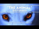 Disturbed The Animal Official Music Video